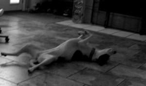 Zoe_napping